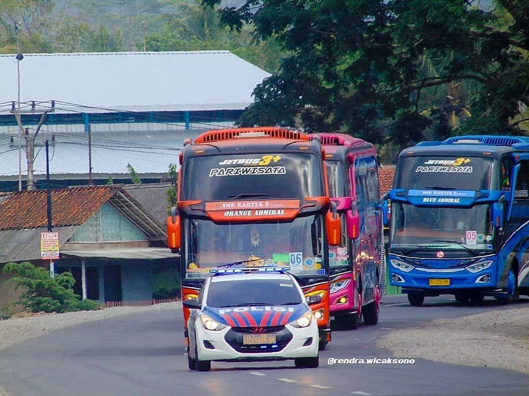 Kangen Piknik Cung Repost Rendra Wicaksono Gombong Jawa Tengah Indonesia Orange Admiral Galleryorangeadmiral Pink Admi Kupu Kupu