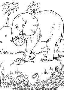 ausmalbild elefant im dschungel 1 | animal coloring