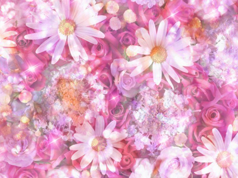 Fondos De Flores Para Fotos Para Pantalla Hd 2 Fondosmovil Net