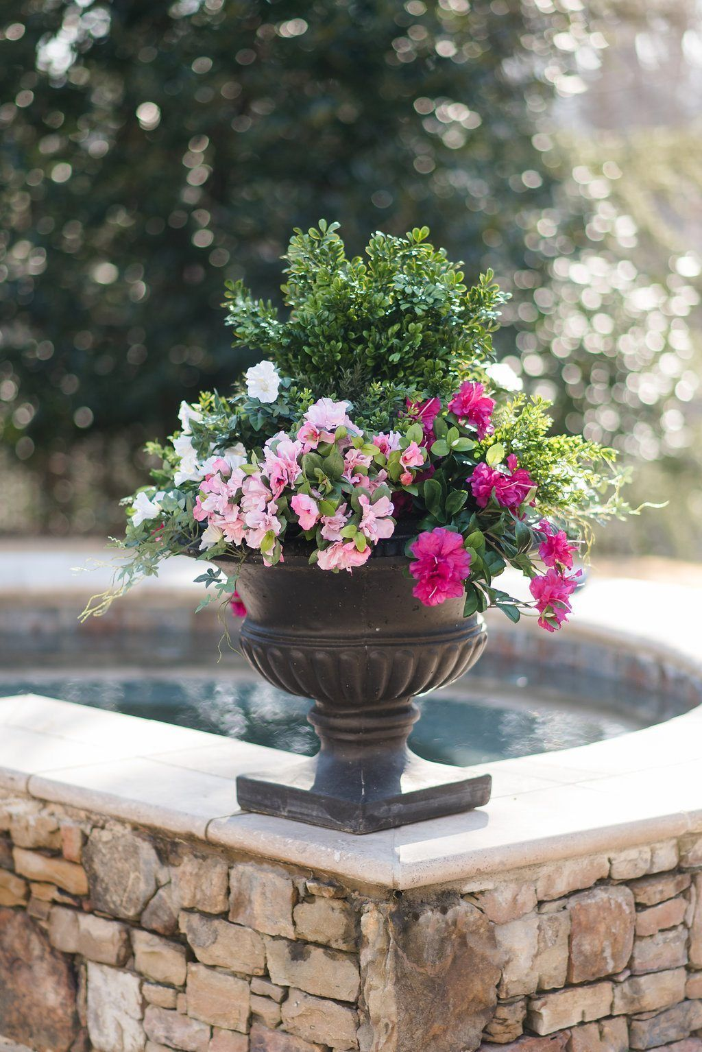 Plastic Boxwoods And Silk Azalea Plants Used In Black Flower Container By Pool Spa Fake Potted Plants Fake Flowers Artificial Flowers Outdoors