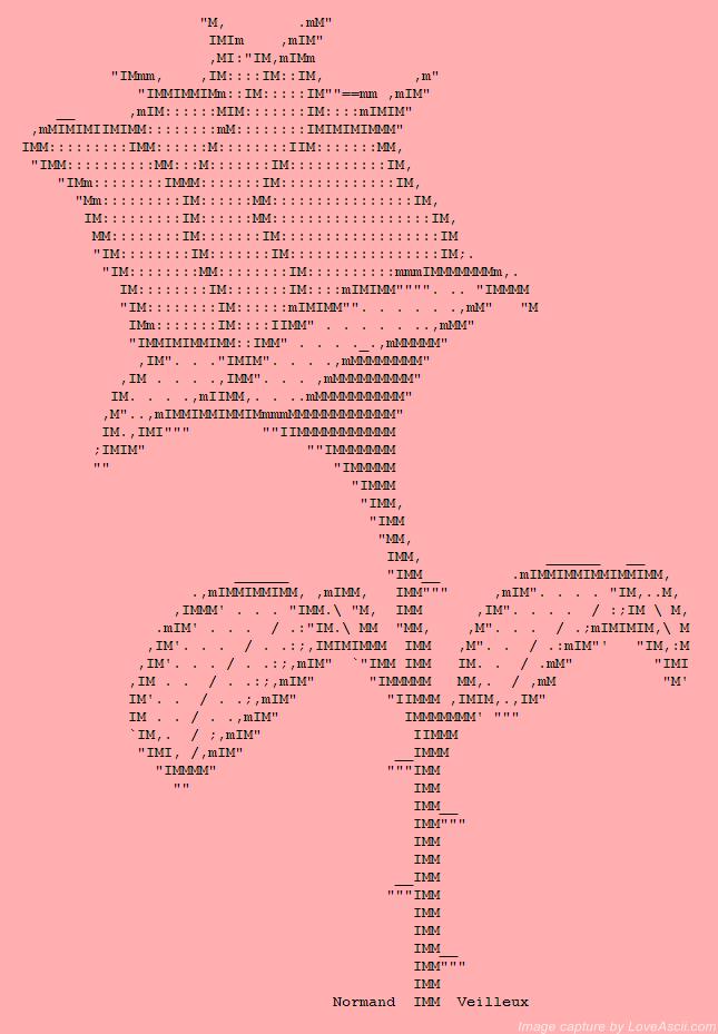 A pink ASCII rose   ASCII Art Flowers   Pinterest   Rose