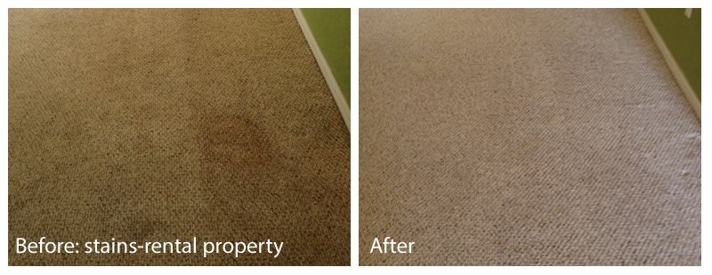 Before After Pet Stains On Berber 13 Pet Stains How To Clean Carpet Carpet Cleaning Service