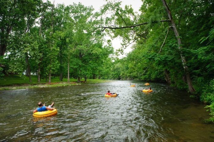 There S Nothing Better Than Tennessee S Natural Lazy River On A Summer S Day Tennessee Vacation East Tennessee Float Trip