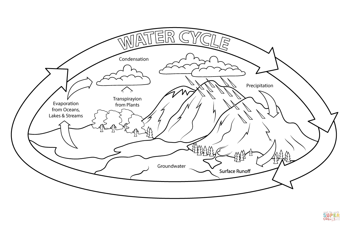 Download Or Print This Amazing Coloring Page Water Cycle