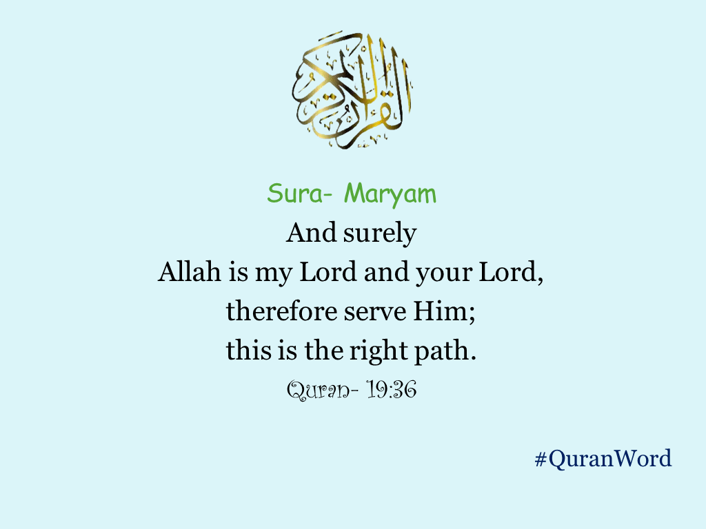 Read Online Surah of The Holy Quran Translation in English