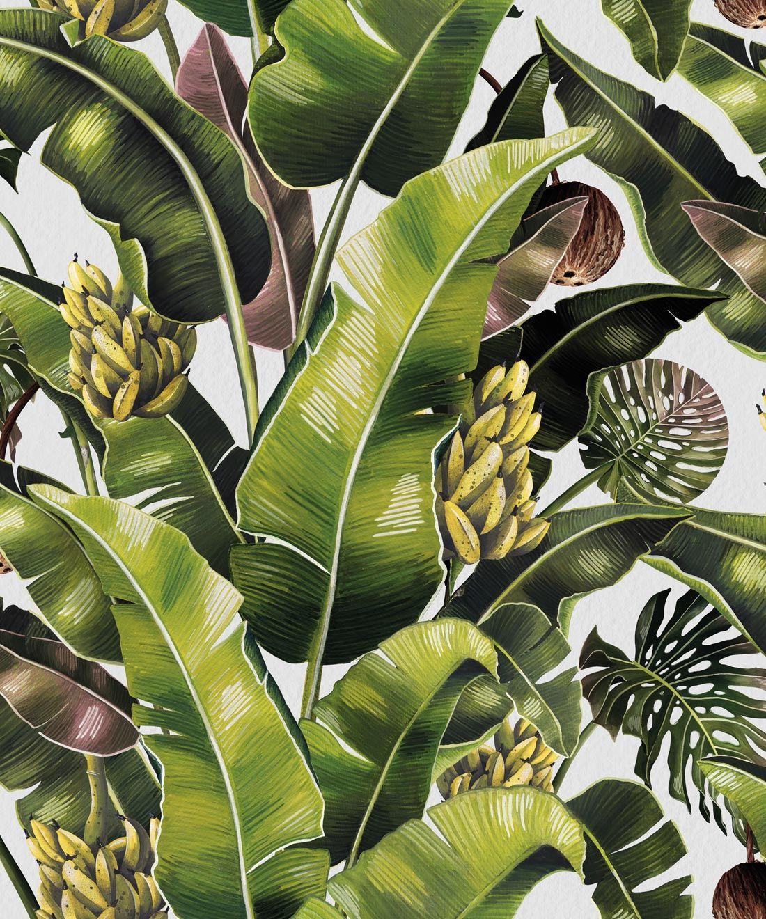Kingdom Palm Wallpaper • Tropical, Botanical Decor ...