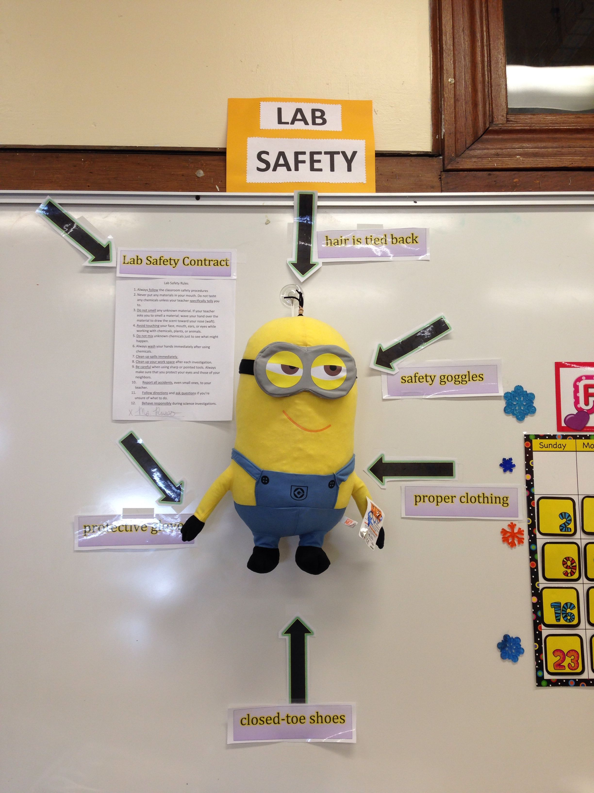 lab safety minions setting a good example for my sixth graders