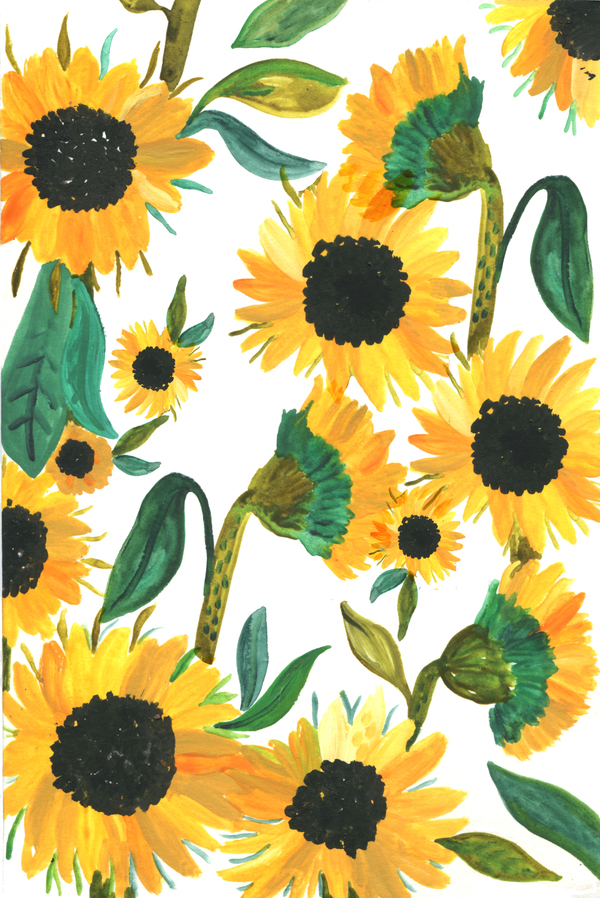 Gouache Painting Of Sunflowers In 2020 Sunflower Iphone Wallpaper Sunflower Wallpaper Art