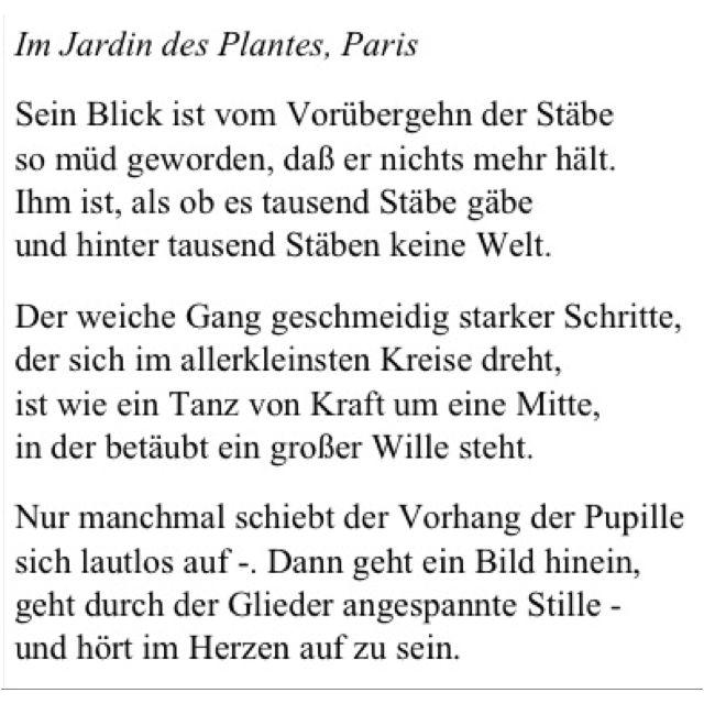 Der Panther Rainer Maria Rilke Worter Zitate Gedichte