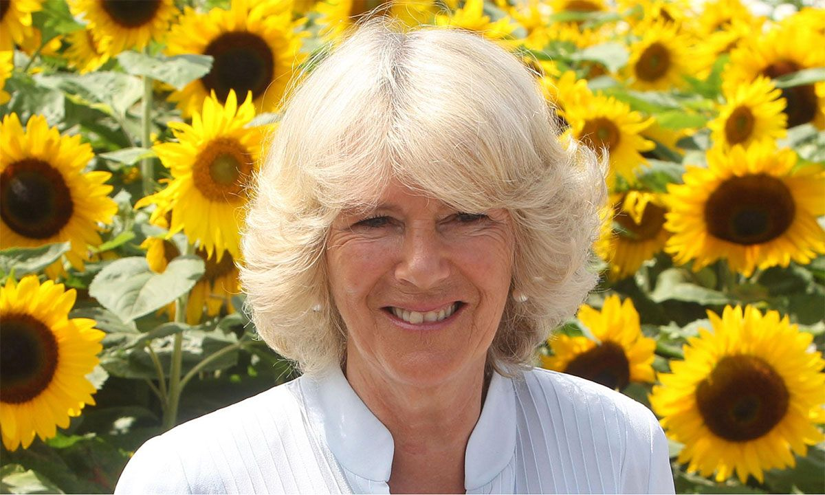 Camilla Parker Bowles Nude   The 25 Ugliest Celebrities