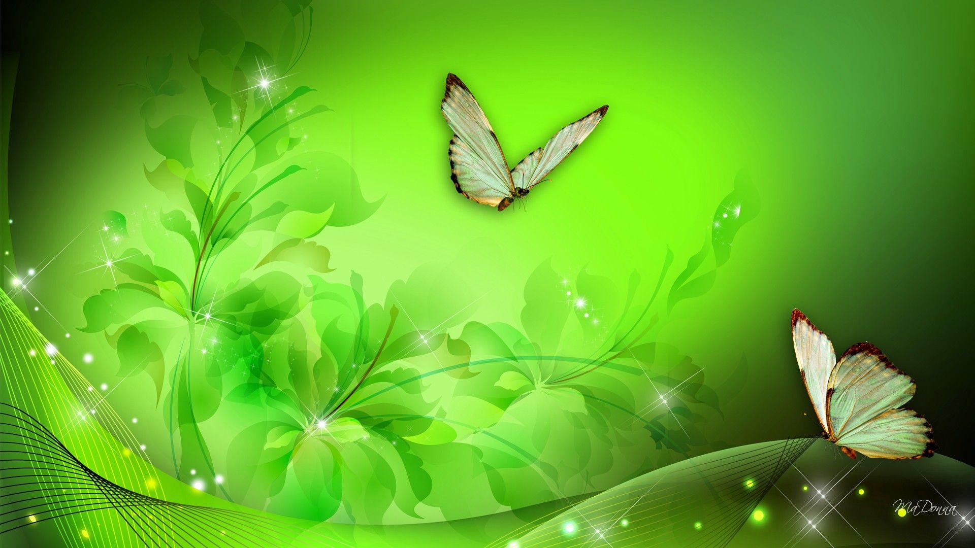 Green Butterfly Flower Wallpaper Flower Background Wallpaper Wallpaper Backgrounds Flower wallpapers full hd fantasy