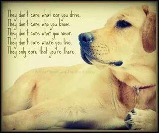O Hundespruche Ich Liebe Hunde Hunde