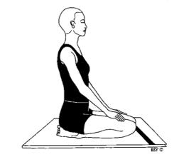 vajrasana  easy yoga poses yoga poses poses