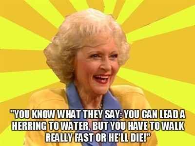 """26 Hilarious Things Rose Nylund Said On """"The Golden Girls""""   Golden girls quotes, Golden girls ..."""