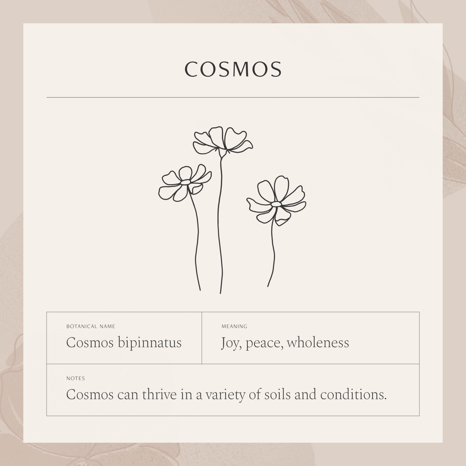 Cosmos Flower Necklace In 2020 Cosmos Tattoo Create My Tattoo Flower Meanings