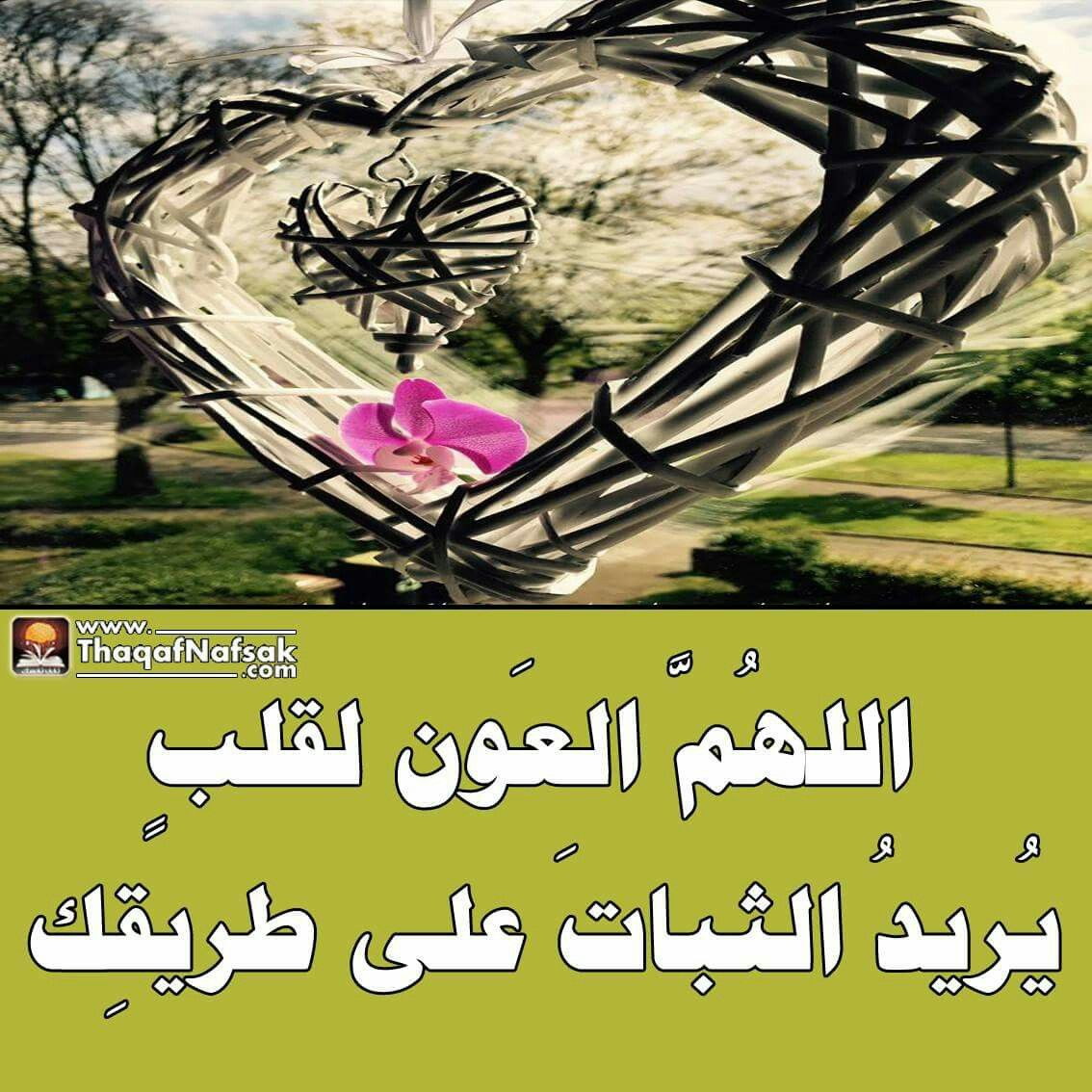 يارب اللهم ثبتنا على دينك وسنة حبيبك محمد