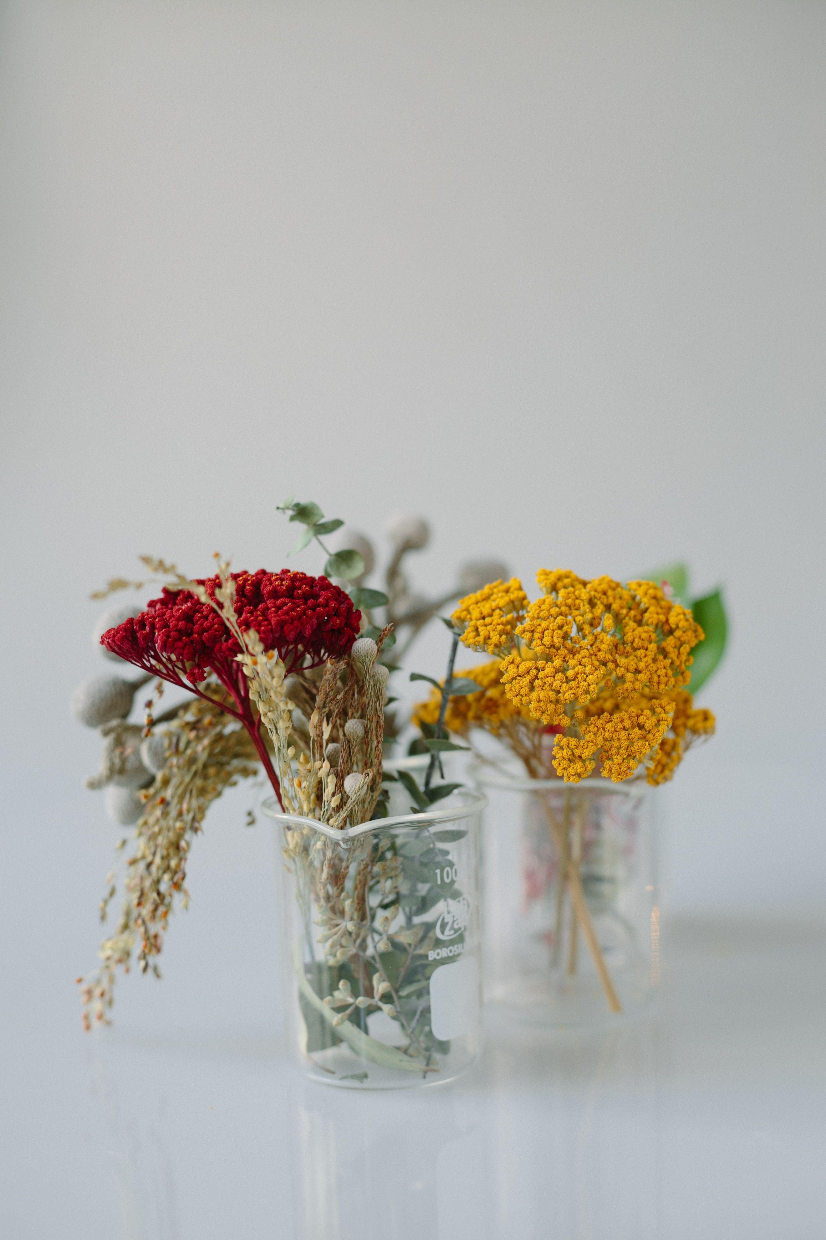 Dried florals to make custom hurricane candle holders