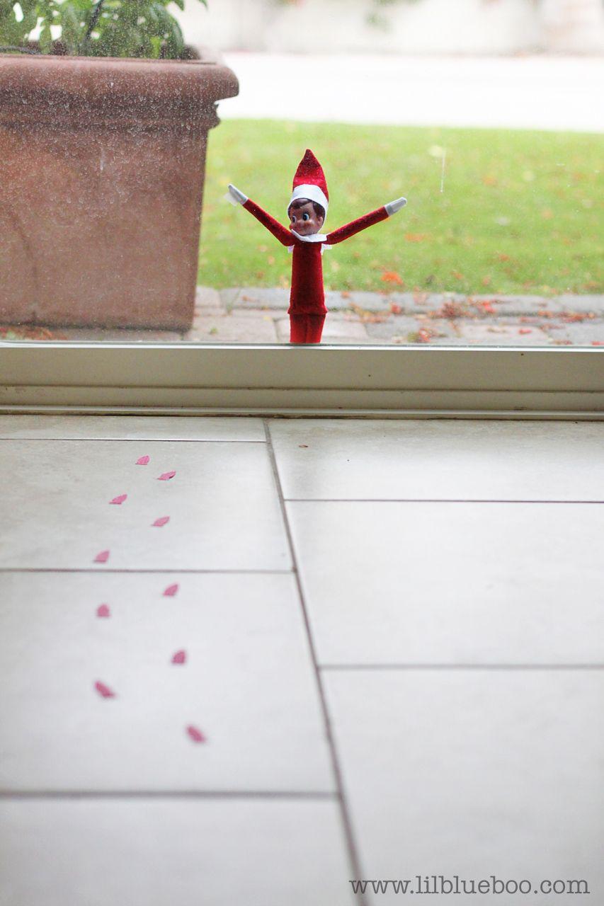 18 Elf on the Shelf Ideas (An Elf-Sized Photo Shoot)
