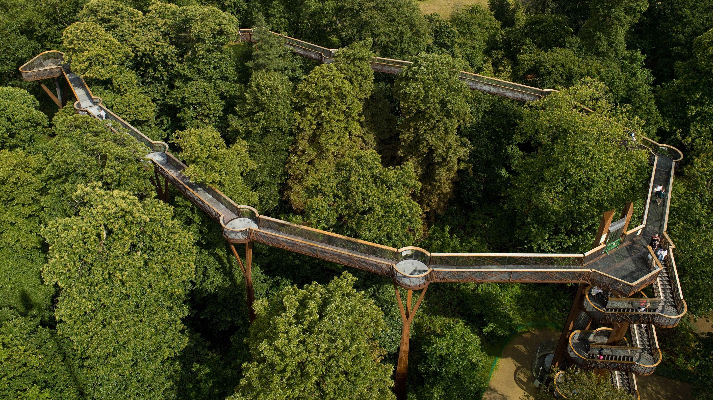 0614195f14206c5a1f0e831cb481e623 - How High Is The Tree Top Walk At Kew Gardens