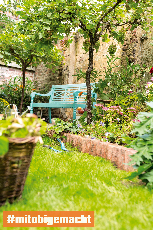 Naturnaher Garten Tipps Zur Gartengestaltung Obi Garten Planen Garten Selber Machen Garten