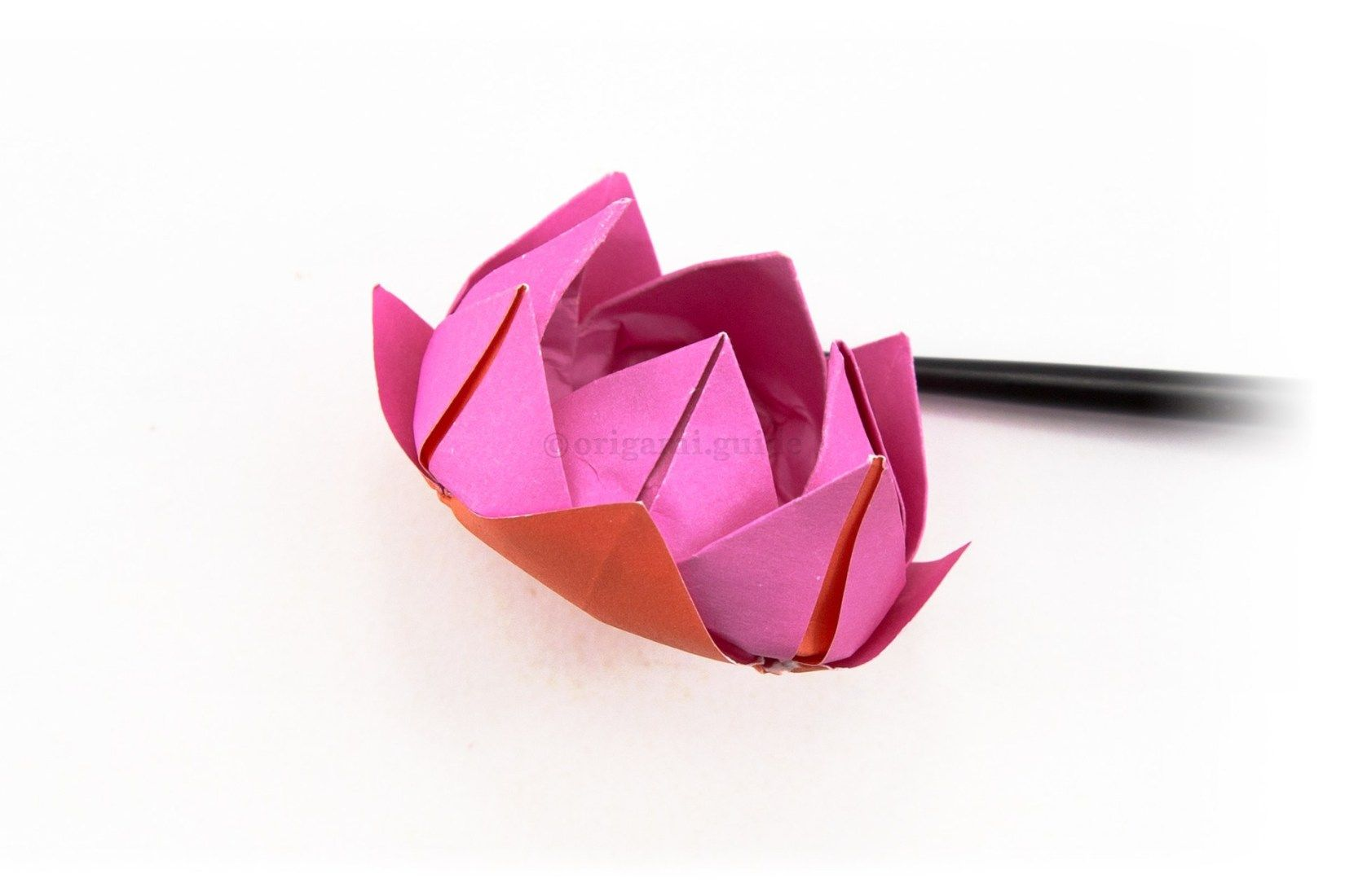 Incredible Origami Lotus Flower - Instructions & Video Tutorial ... | 1100x1650