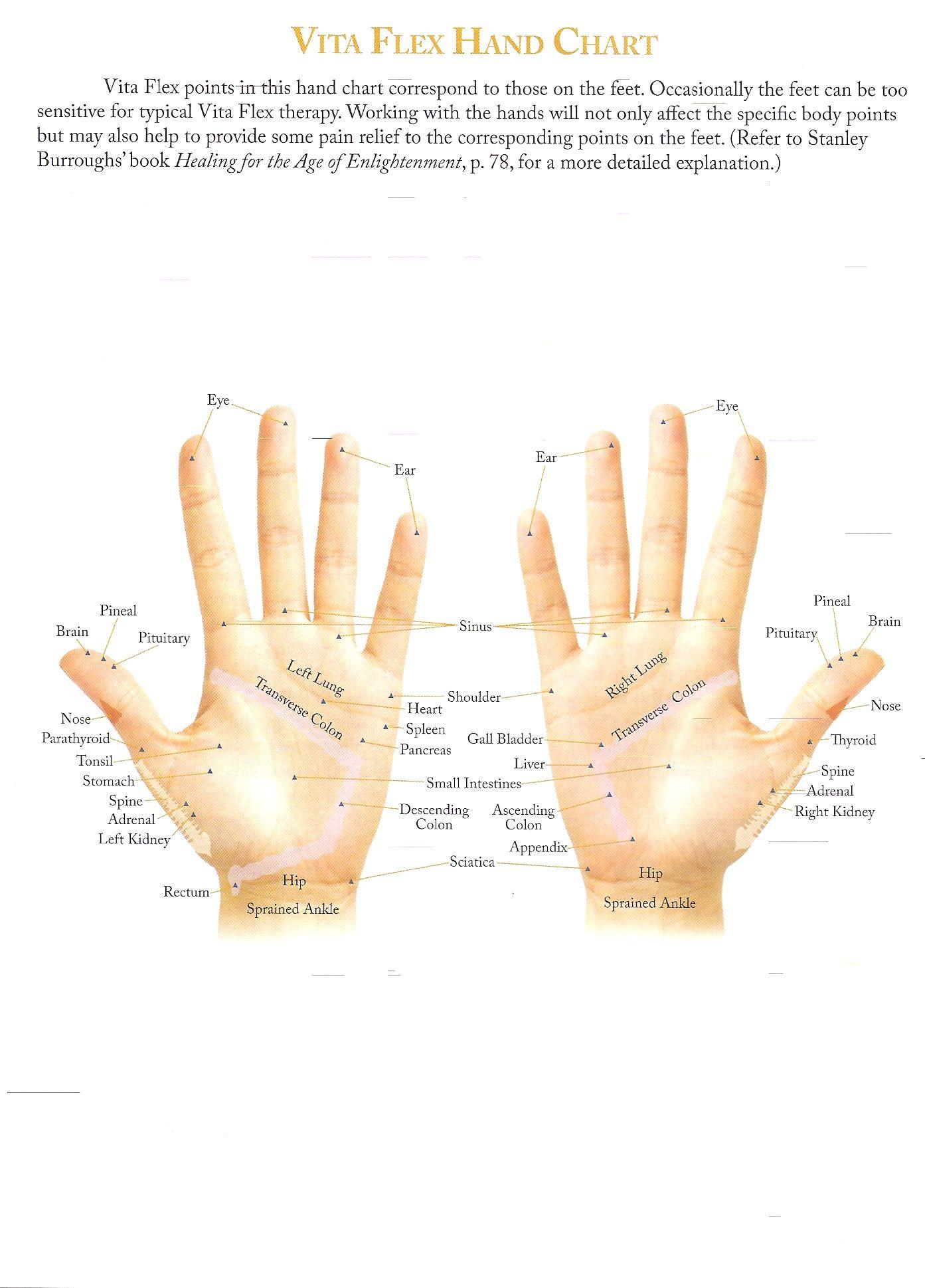 Vita flex hand chart young living essential oils essentials also pinterest rh