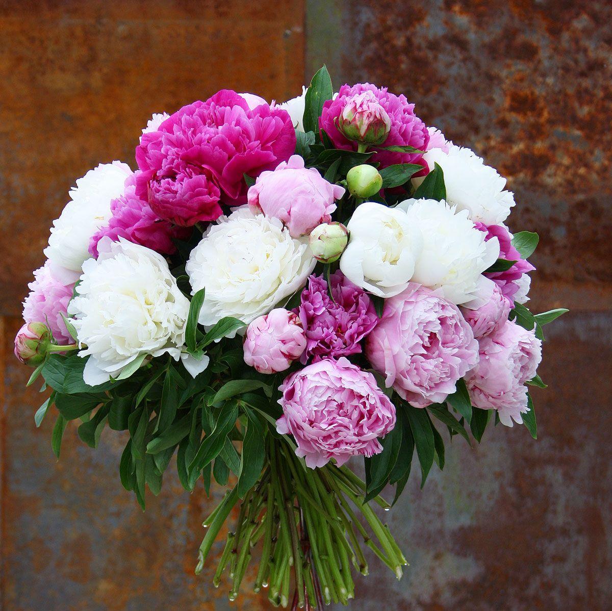 Romantischer Blumenstrauss Mit Peonien Pfingstrosen Bauernrosen