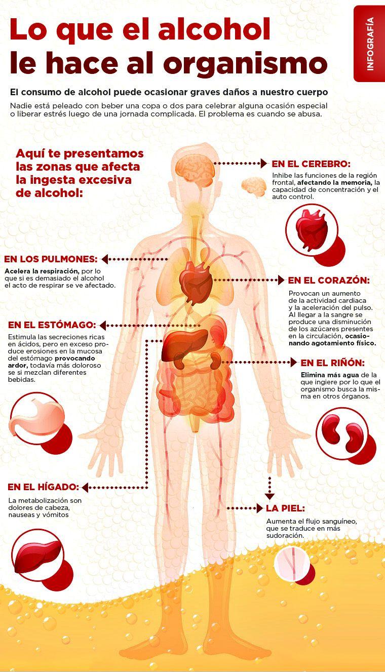 En que el alcohol danos provoca cuerpo el