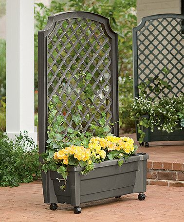 Another Great Find On Zulily Planter With Trellis Self Watering