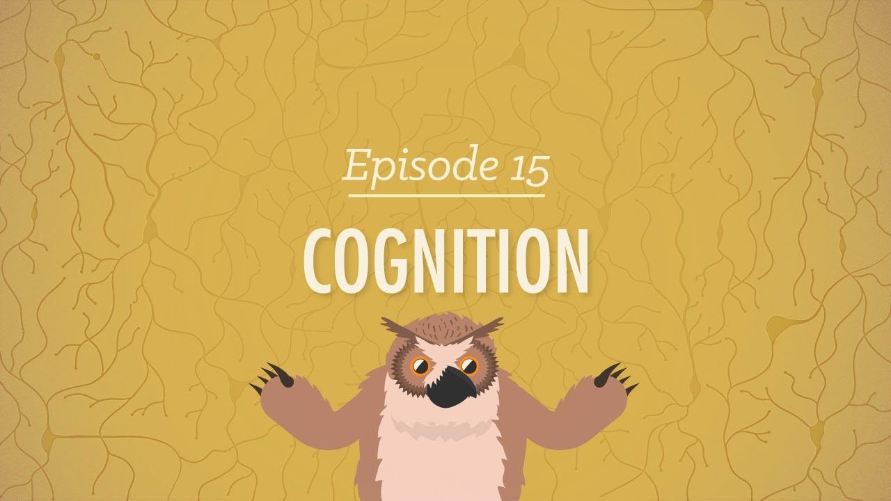 Cognition: How Your Mind Can Amaze and Betray You | Psychology ...
