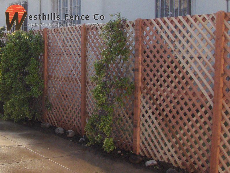 Kind Of Digging A Simple Lattice Fence Easy Cheap And Can Grow