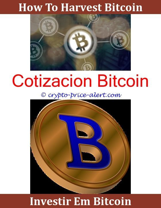 Is Bitcoin A Publicly Traded Stockfree Bitcoin Cloud Mining Bitcoin