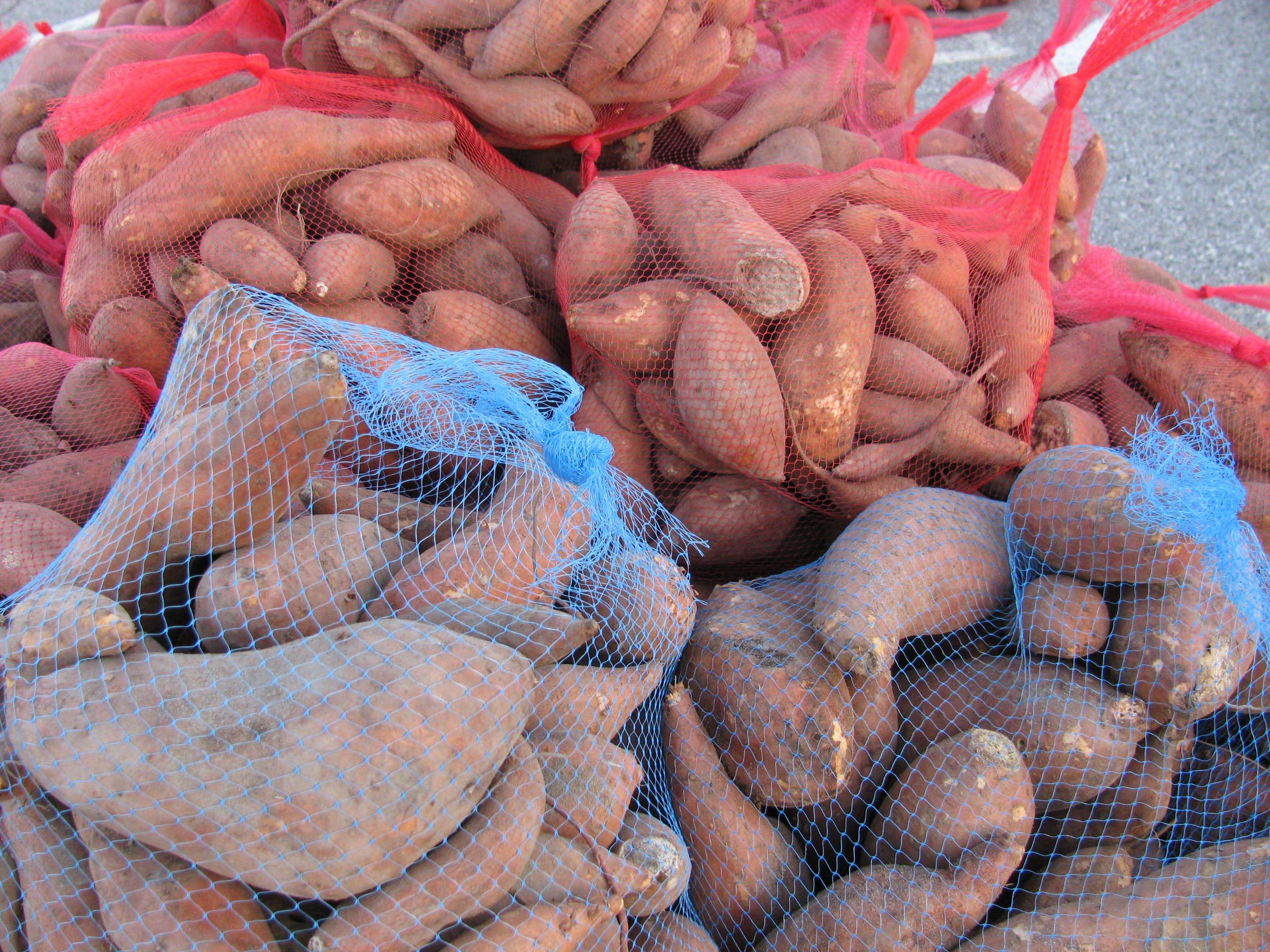 More than 20 tons of potatoes will be dropped at Southview