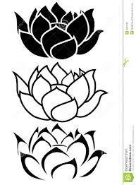 Flor De Lotus Pesquisa Google Flor De Lotus Desenho Padroes