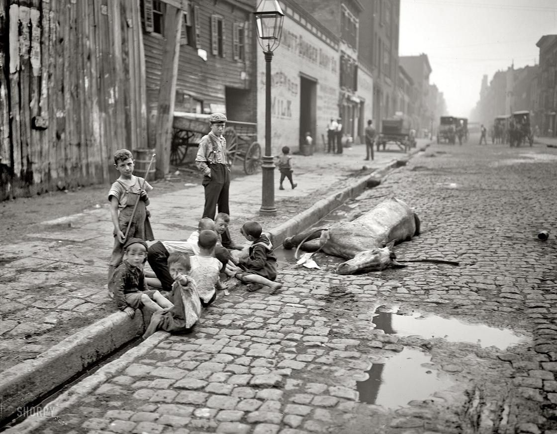 Where can I find or buy a copy of an old New York newspaper in 1880s?