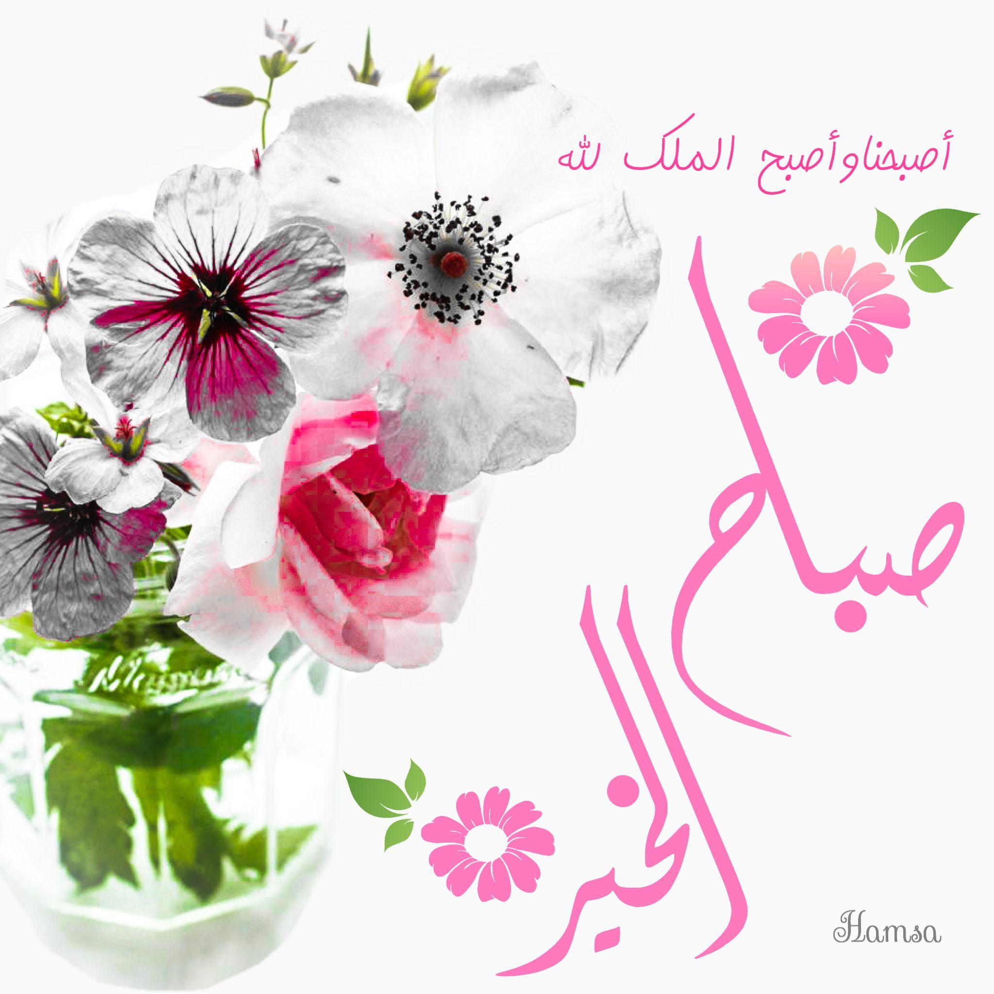 Desertrose يسعد صباحكم بكل خير صباح الخير Morning Wish Good Morning Good Night Morning Messages
