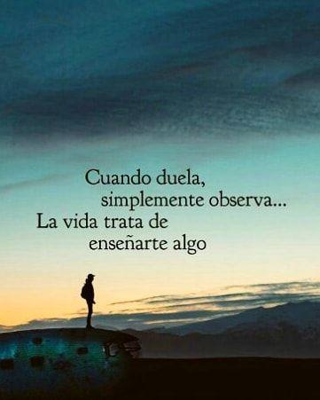 Cuando duela, simplemente observa... La vida trata de enseñarte algo #paradigmaterrestre #felizmiercoles #felizdia #vida #sabiduria…