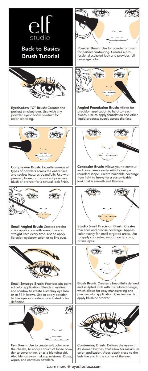 e.l.f. Cosmetics Back to Basics Makeup Brush Tutorial. how to use different make up ...
