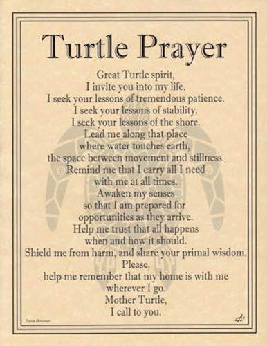 Turtle Prayer Parchment Page For Book Of Shadows Altar  Turtle
