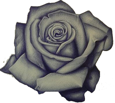 Pin By Luis Lugo On Rosas Realistic Rose Tattoo Rose Drawing Tattoo Rose Sketch
