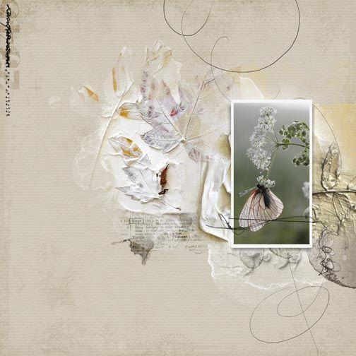 Pale_Moth