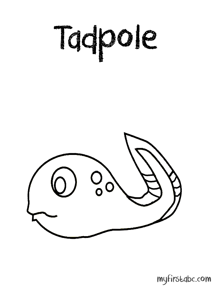 Tadpole Colouring Pages Colouring Pages Printable Coloring Pages Printable Coloring