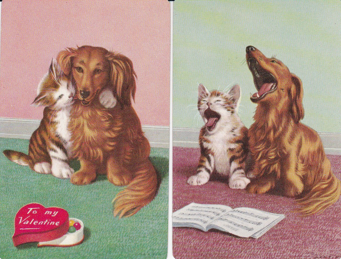 Cute dog and cat swap cards
