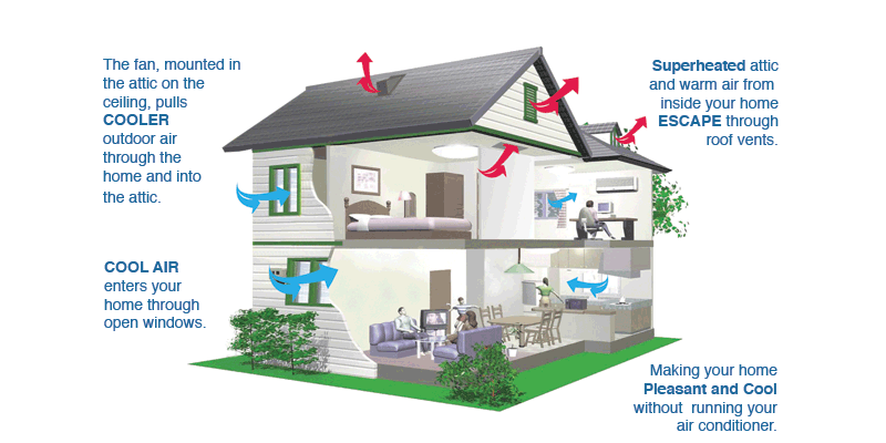 Quietcool whole house fan wiring diagram somurich quietcool whole house fan wiring diagram state of the art engineering on this whole house asfbconference2016 Images