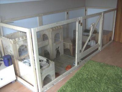 innenhaltung fotos rabbit bunny and bunny hutch. Black Bedroom Furniture Sets. Home Design Ideas