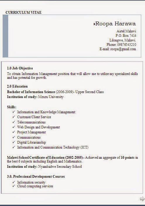 Ejemplos Curriculum Sample Template Example Ofexcellent Curriculum