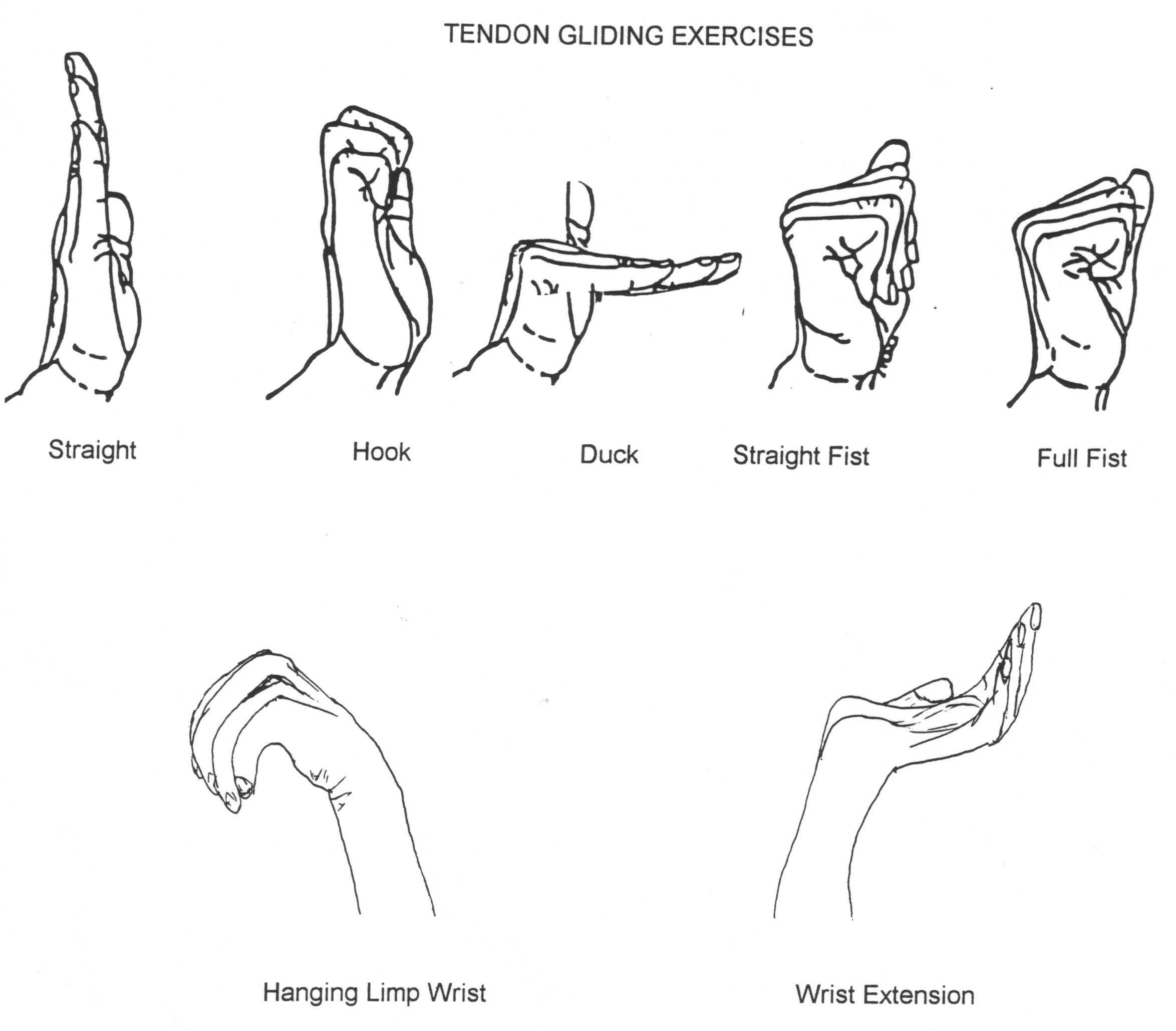 Image Result For Ulnar Nerve Glide Hand Out