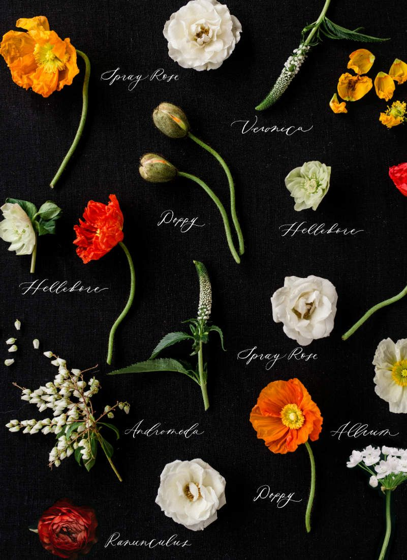 Types Of Wedding Flowers By Colour Gorg Flowers And Gardens