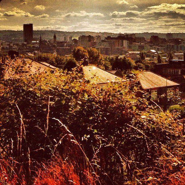 Autumn colours come to Sheffield (photo by @mrpilks on IG) #socialsheffield #sheffield