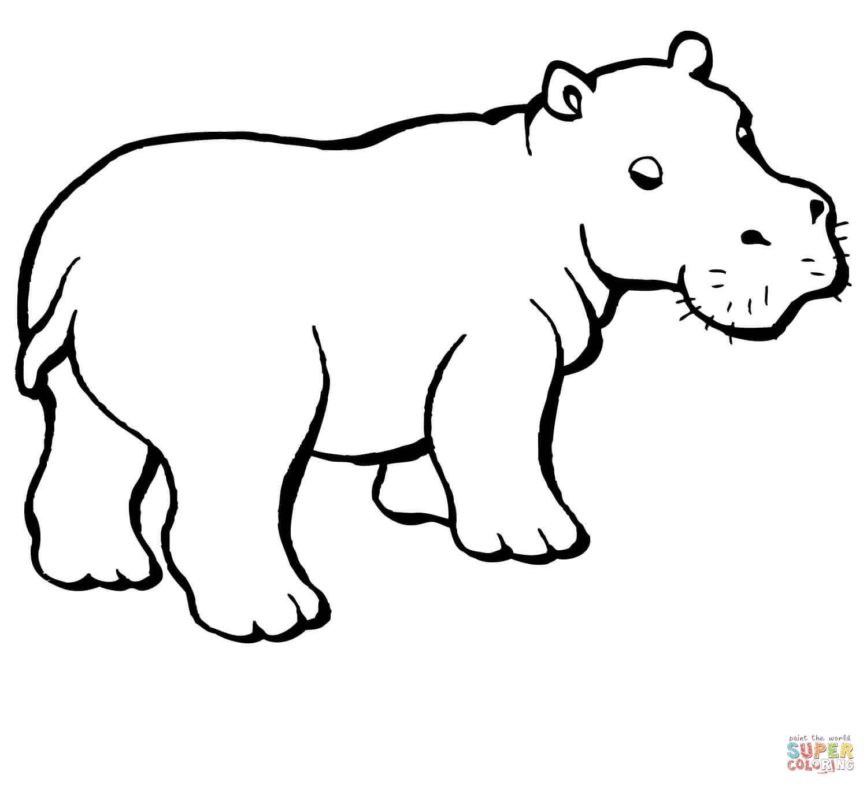 Flusspferd Ausmalbilder Ausmalbilder Flusspferd Hippo Tattoo Animal Caricature Hippo Drawing